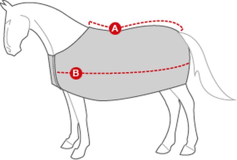 maat kiezen paardendeken