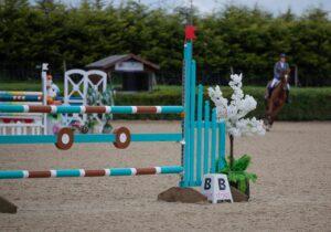jumping paarden
